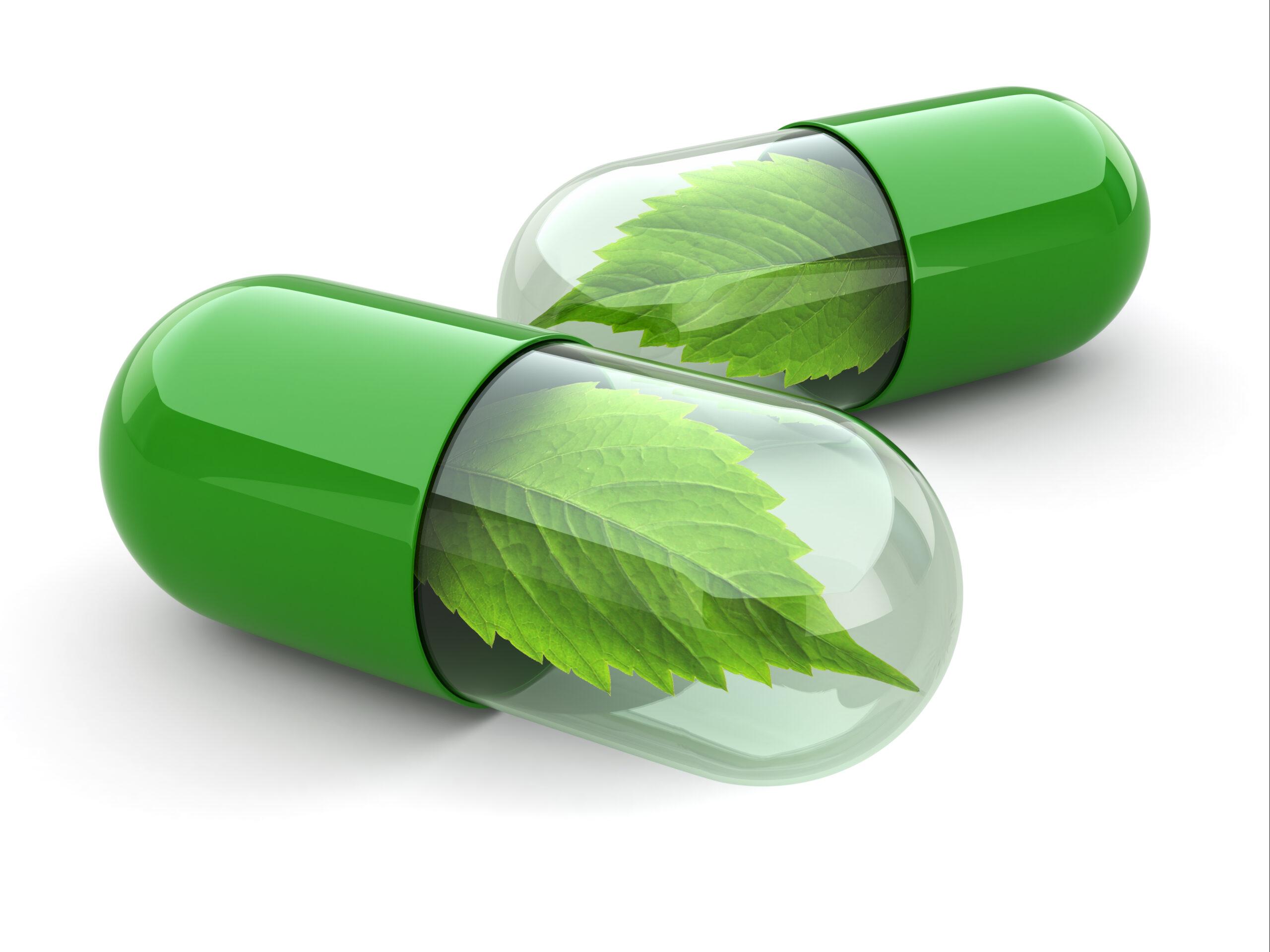 Probiotyki i prebiotyki